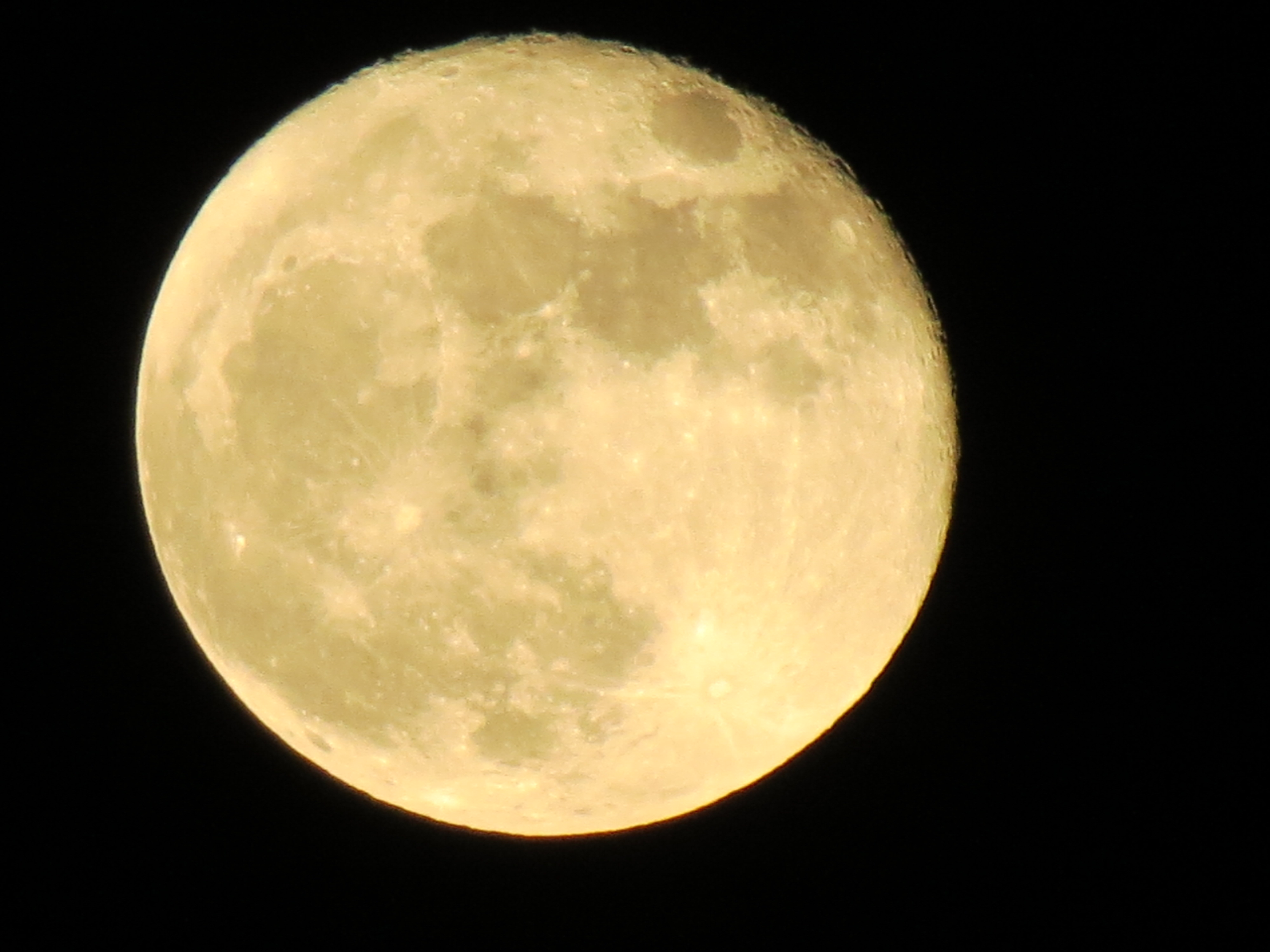 full moon mon nov 19 2013 012 tammy goldammer